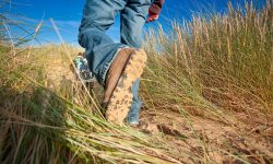 Walking boots in long grass
