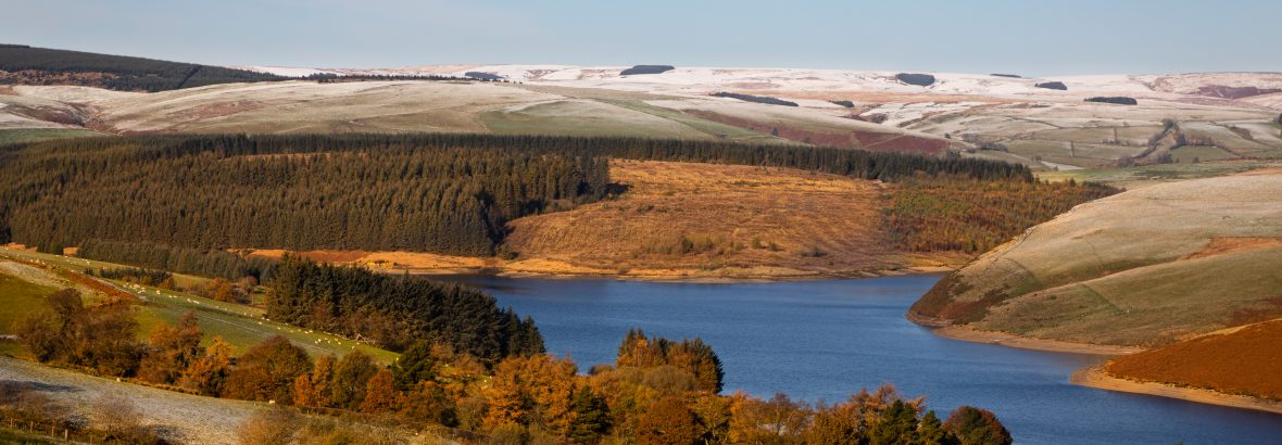 Newyddion Platfform Amgylcheddol Cymru, Medi 2021